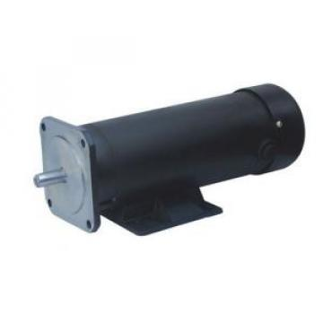123ZYT Series Electric DC Motor