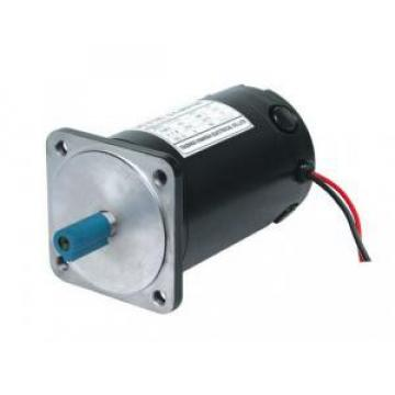 100ZYT Series Electric DC Motor