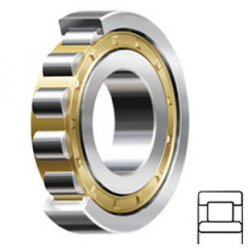 SCHAEFFLER GROUP USA INC NU332-E-M1A-C3 Cylindrical Roller Bearings