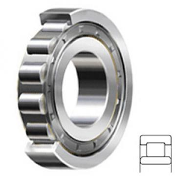 FAG BEARING NU407-C3 Cylindrical Roller Bearings