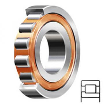 SKF NJ 210 ECP/C3 services Cylindrical Roller Bearings