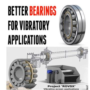 FAG Vibratory Machinery Roller Bearings 24080CC/W33