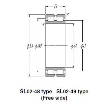 Bearing SL01-4972