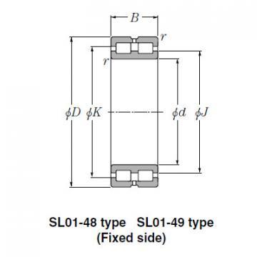 Bearing SL02-4832