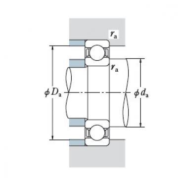 Bearing BT220-2A DF