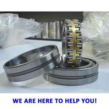 TP 163 cylindrical roller thrust bearing
