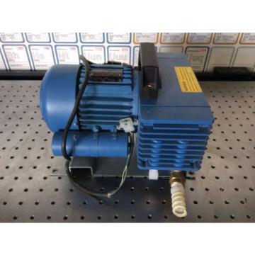 Savant Gel-Pump
