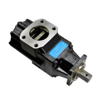 Double Hydraculic Vane Pump Replacement Denison T6GCC-B22-B10-6-L00-A1-00